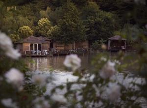 Виды Ачигварского озера